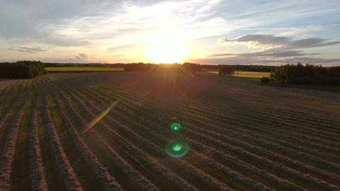 Aerial: flight backwards rising out of cut hay field at sunset in praries Footage