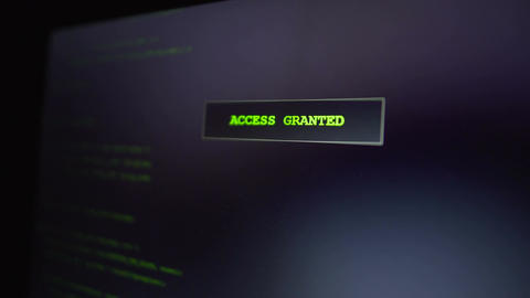 Computer criminal hacking website, successful attempt, access granted on screen Footage