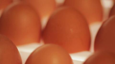 Eggs Footage
