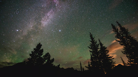 Time lapse of milky way behind trees Footage