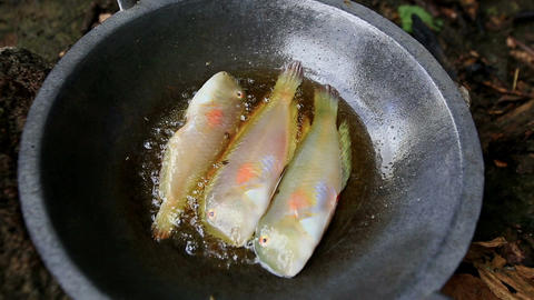 Closeup Three White Fishes Fry in Boiled Oil on Metal Pan Footage