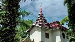 Malaysia Penang island 009 burmese buddhist temple building behind palm trees Footage