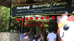 Malaysia Penang island 058 entrance of butterfly farm with tourists Footage