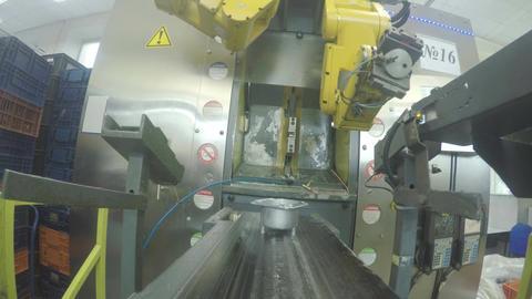 Mechanical Robot Arm Puts Meter Detail on Conveyor Closeup Footage