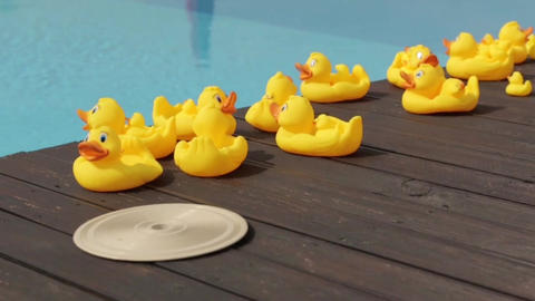 Yellow Rubber Ducks By The Pool medium pan shot ビデオ