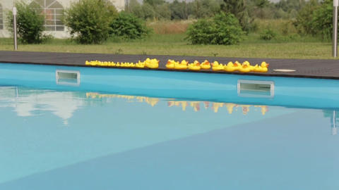 Yellow Rubber Ducks By The Pool wide shot Footage