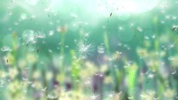 Falling Flowers 1