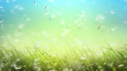 Falling Flowers 2
