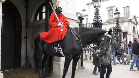 Royal Horse Guards Footage