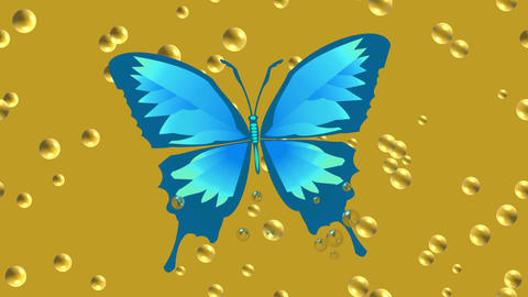Video animation blue tropical butterfly drowning in beer Animation