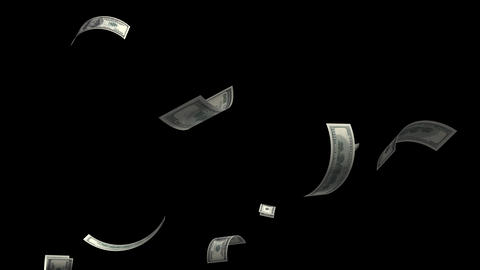 Money falling dollar banknotes on a transparent background Animation