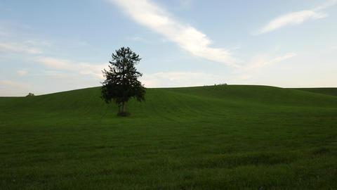 Hokkaido hill Filmmaterial