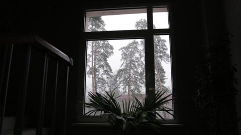 SNOW FALLS UP OUTSIDE THE WINDOW Footage