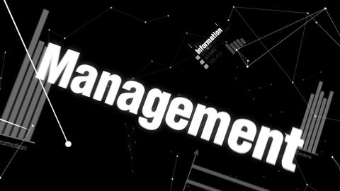 Information, Management, Development, System, Solutions,... Stock Video Footage