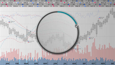 Indicate about 20 percents circle dial on various animated charts (no text) Animation