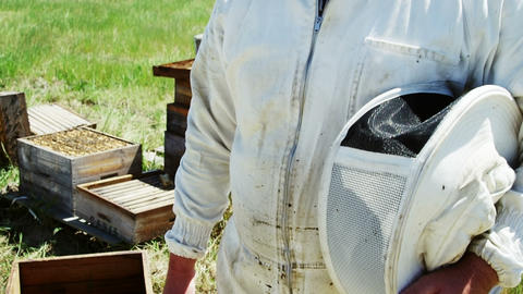 Confident beekeeper smiling at camera Footage