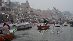 Ganges river-boat tour Filmmaterial