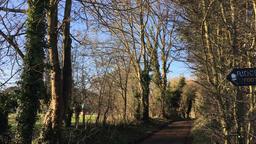 Country walk path in English lane UK Footage