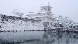 Toyama Castle ruins park DSCF9250 Footage