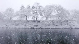 Toyama Castle ruins park DSCF9290 Footage