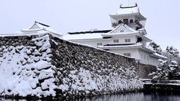 Toyama Castle ruins park DSCF9828 Footage