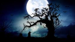 Moon Cemetery 4 (2) Animation
