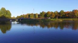 Autumn city park. Nature landscape Filmmaterial