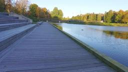 Autumn city park. Nature landscape Footage