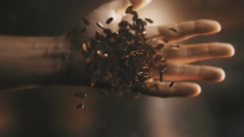 Three videos of throwing coffee beans in slow motion Footage