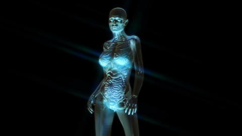 Digital 3D Animation of the female human Anatomy Animation