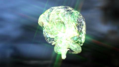 Digital 3D Animation of a human Brain Animation