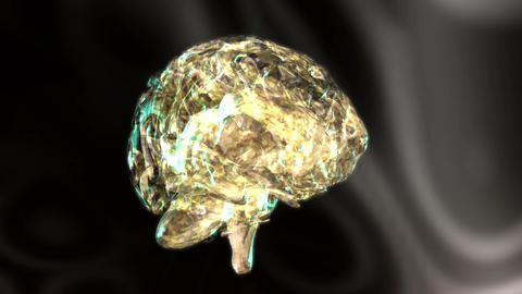 Digital 3D Animation of a human Brain Stock Video Footage