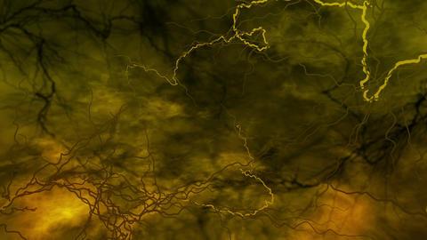 SHA Blood Vessel Image Yellow Animation