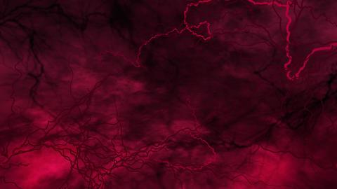 SHA Blood Vessel Image Pink Animation