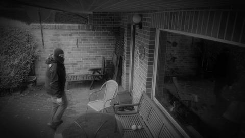 11854 dog chased burglar away infrared security camera 4k Footage