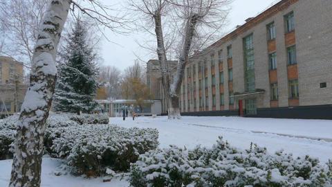 Winter in Ukraine, snow, frost, Christmass tree Filmmaterial