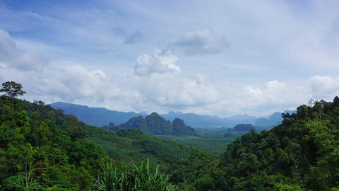 Rainforest in Khao Sok National Park, timelapse Footage
