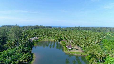 Rural landscape with a lake. Go backwards. Thailand. Aerial Footage