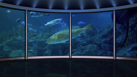 HD TV-54 Virtual Studio Green Screen Background Aquarium Animation