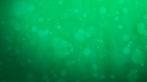 Dark green background with floating particles Animation