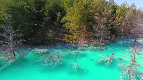 Turquoise Lake and Pine Trees, Turkey Footage