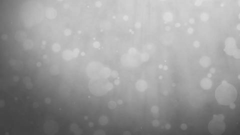 Silver gray background with floating particles Animation
