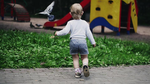 Blonde little boy running on playground in summer park scare doves. Childhood Live Action