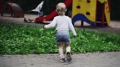 Blonde little boy running on playground in summer park scare doves. Childhood Footage