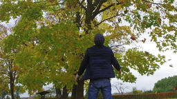 Man is throwing leaves autumn park. Slow motion footage Footage