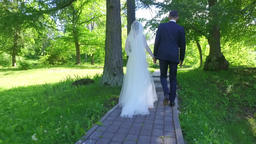 Bride and groom walking on path of forest avenue Footage