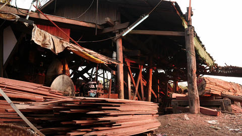 Timber processing in Mandalay wood factory in Myanmar - 2 videos sequence Live Action