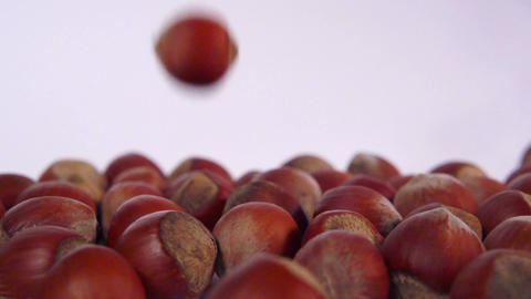 hazelnut slow motion Archivo