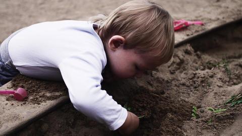 Adorable little boy on playground at sandbox. Sunny day. Toys. Child. Childhood Footage