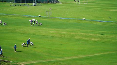 Golfers are walking along the field ビデオ